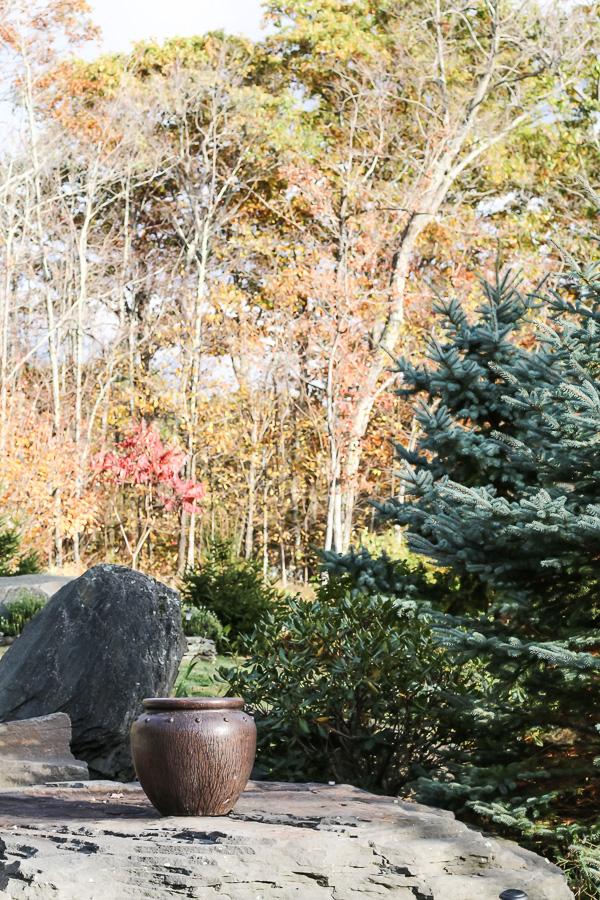 Fall-Catskill-3