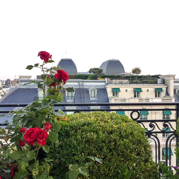Paris-Diary-48